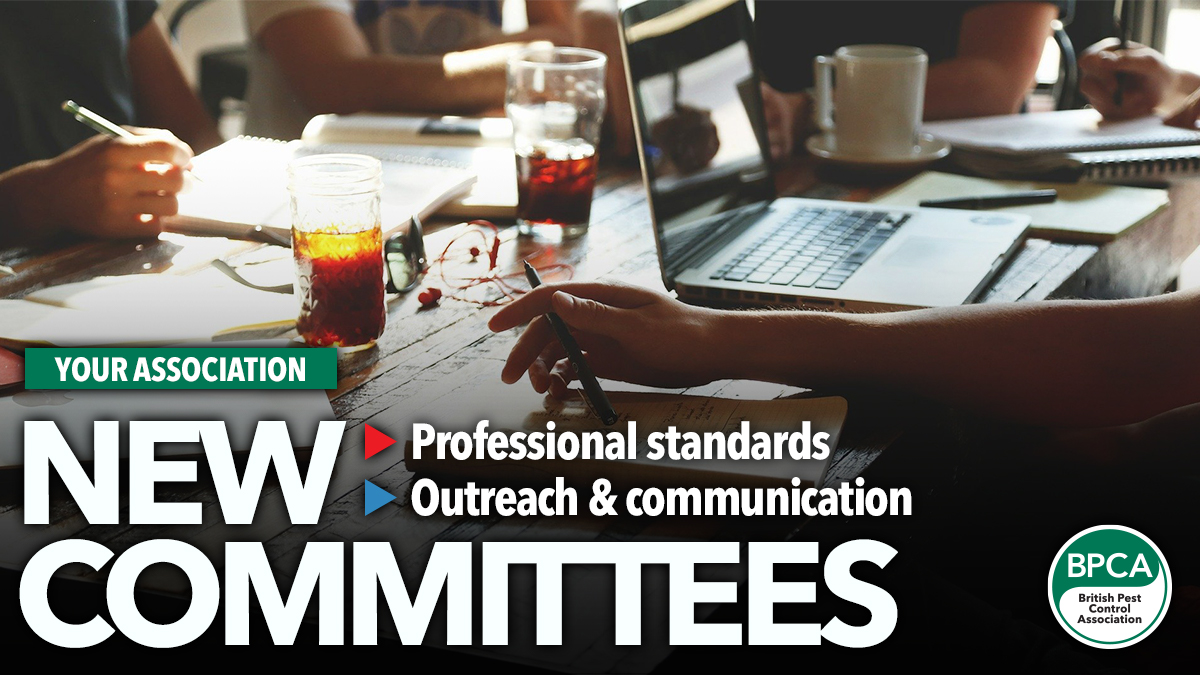 new Committees