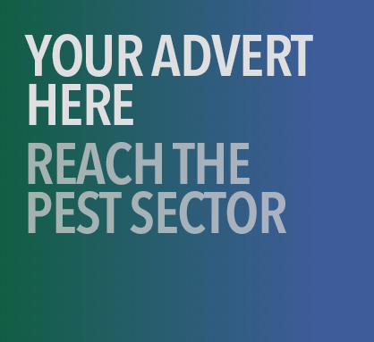 Your advert here 1