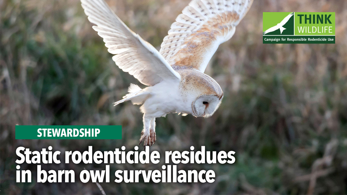 static-residues-barn-owl-surveillance