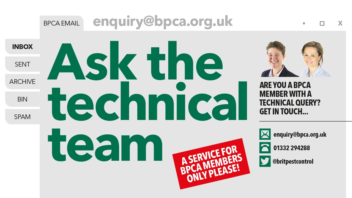 Ask the technical team anything